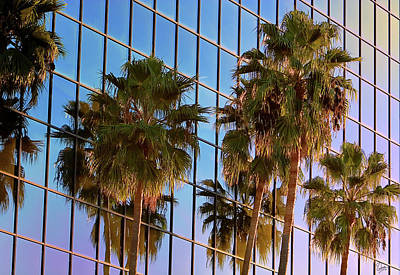 Photograph - Reflected Palms by Endre Balogh