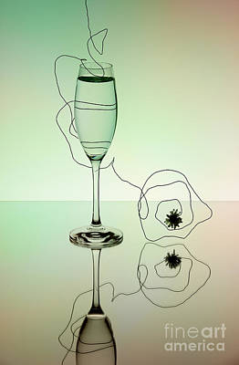 Champagne Photograph - Reflection 02 by Nailia Schwarz