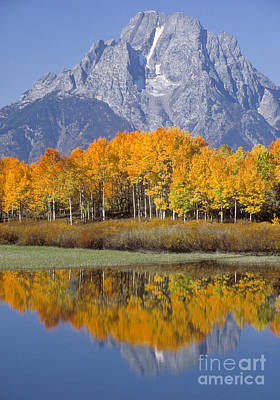 Photograph - Reflection At Oxbow Bend by Sandra Bronstein