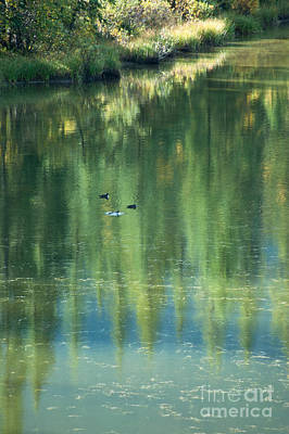 Art Print featuring the photograph Reflection by Bob and Nancy Kendrick