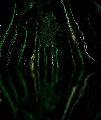 Photograph - Reflection by Elizabeth  Doran