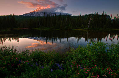 Photograph - Reflection Lake Wildflowers by Dan Mihai