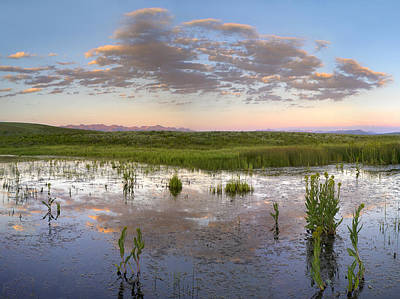 Arapaho National Wildlife Refuge Photograph - Reflection Of Clouds In The Water by Tim Fitzharris