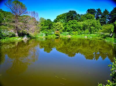 Reflection Pond Art Print by Erica McLellan
