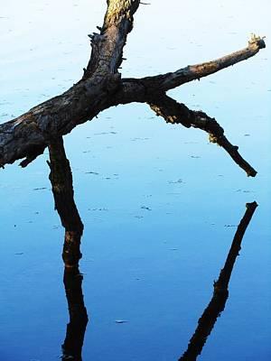Reflections #1 Art Print by Todd Sherlock