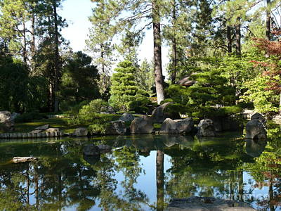 Reflections In A Japanese Garden Art Print by Terri Thompson