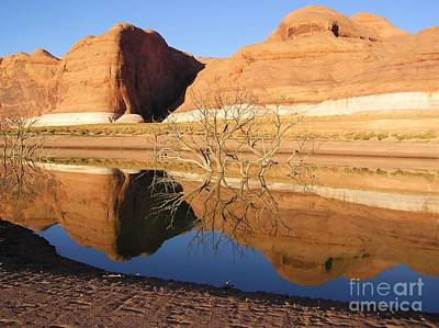 Photograph - Reflections In Lake Powell by Michele Penner