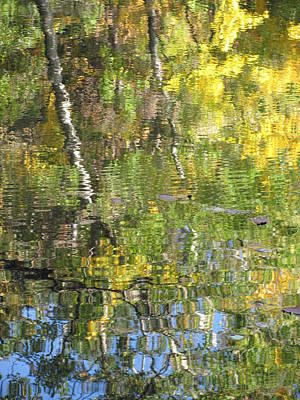 Reflections In Paradise 1 Print by Anita Burgermeister