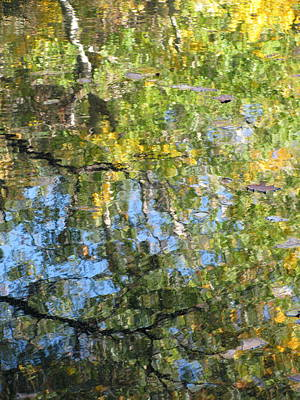 Photograph - Reflections In Paradise 2 by Anita Burgermeister