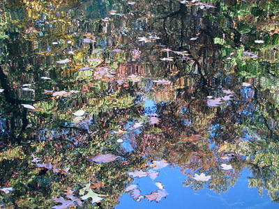 Photograph - Reflections In Paradise 3 by Anita Burgermeister