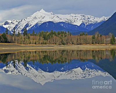 Reflections Art Print by Jack Moskovita