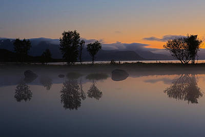 August 2012 Photograph - Reflections Of Trees IIi by Frank Olsen