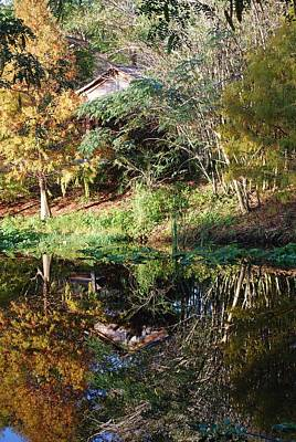 Photograph - Reflections On A Florida Winter Morn by Judy Hall-Folde