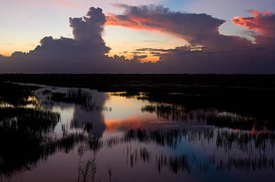Photograph - Reflections On The Everglades by Ed Gleichman