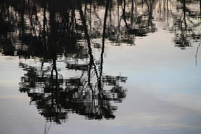 Photograph - Reflections by Rebecca Powers
