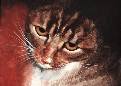 Reflective Kitty Art Print by Tricia Griffith