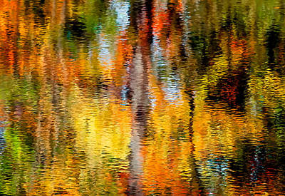Photograph - Reflective Stream by Fred LeBlanc