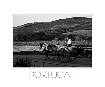 Photograph - Remains Of The Day Portugal by J R Baldini M Photog Cr