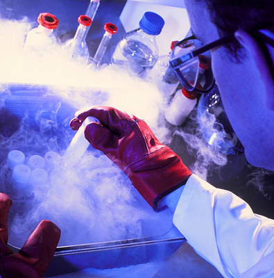 Researcher Removing Sample Tube From Cryostorage Art Print by Tek Image