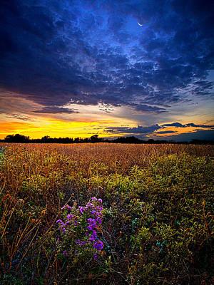 Autumn Leaf Photograph - Return To Bonnie's Meadow by Phil Koch