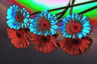 Photograph - Rhapsody In Blue And Red by Fiona Messenger