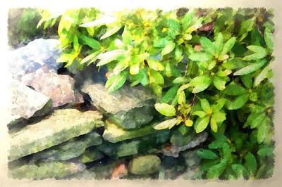 Rhodas And Stones Art Print