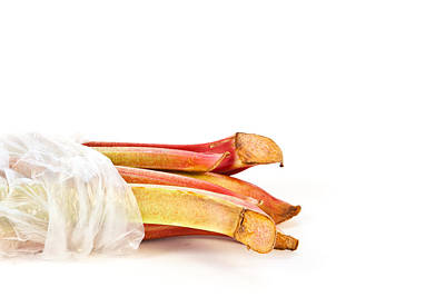 Rhubarb Art Print by Tom Gowanlock