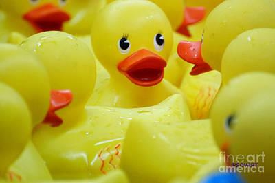 Rubber Ducky Wall Art - Photograph - Ribber Ducky by Patty Vicknair