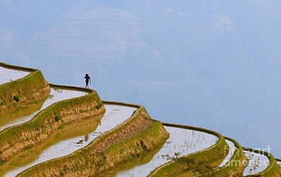 Terracing Photograph - Rice Terraces Of Yuanyang  Yunnan China by Konstantin Kalishko