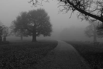Photograph - Richmond Park by Maj Seda