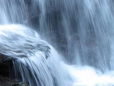 Anne Geddes Florals - Ricketts Glen Waterfall 3944 by David Dehner