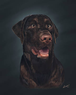 Rico Art Print by Lisa Binion