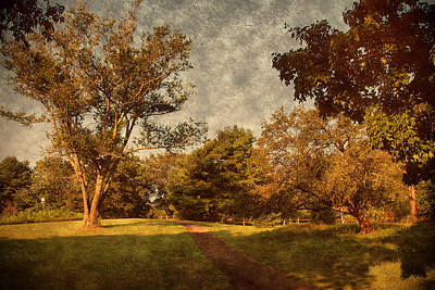 Ridge Walk - Holmdel Park Art Print by Angie Tirado