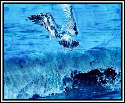 Riding The Wave Blue Gull Art Print by Debra  Miller