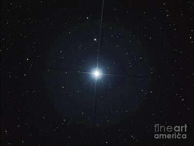 Blue Giant Star Photograph - Rigel Is The Brightest Star by Filipe Alves