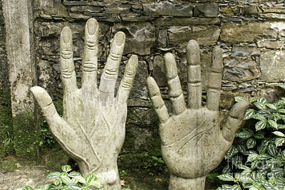 Photograph - Right Hand Las Pozas Mexico by John  Mitchell