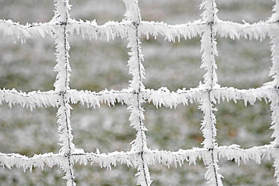 Wintry Photograph - Rime Covered Fence by Christine Till