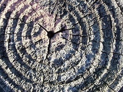 Rings Of Time Art Print by Jan Lawnikanis