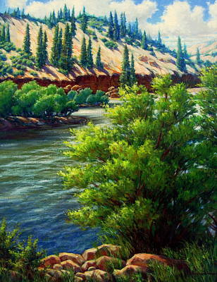 Rio Grande Colorado Art Print by Vickie Fears