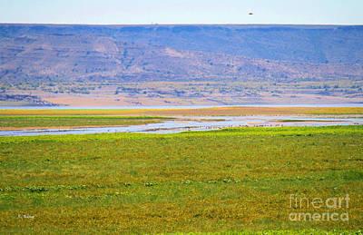 Photograph - Rio Grande River by Roena King