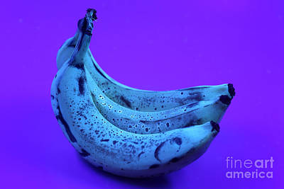 Ripe Bananas In Uv Light 22 Art Print