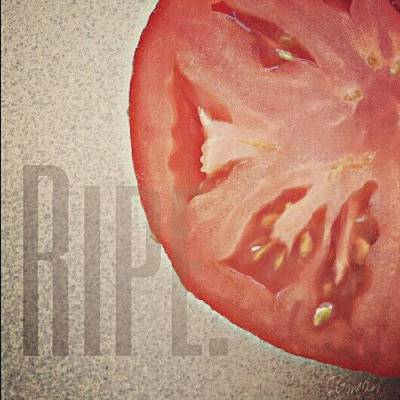 Healthy Wall Art - Photograph - Ripe. #ripe #tomato #veggie #vegetable by Jess Gowan