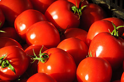 Ripe Tomatoes Art Print by Connie Cooper-Edwards