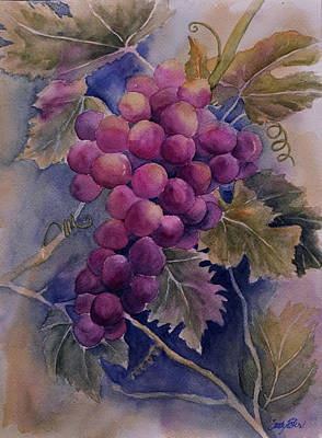 Ripening On The Vine Art Print
