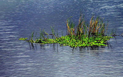 Photograph - Ripples  by T Guy Spencer