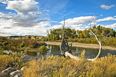Tree Roots Photograph - River At Hudson Wy. by James Steele