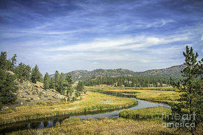 Photograph - River Bend by David Waldrop