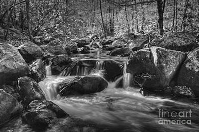 Photograph - River Boulders At Jones Gap by David Waldrop