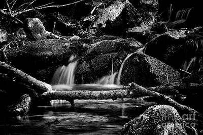 Photograph - River Flows by Venura Herath