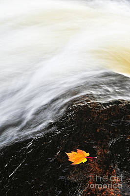 River In Fall Art Print